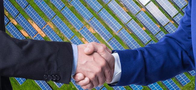 risen-energy-e-parceira-de-placas-solares-da-renovigi/