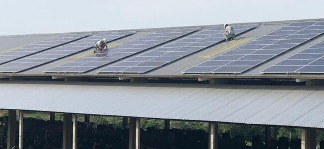 uso-da-energia-fotovoltaica-cresce-nas-propriedades-rurais-em-meio-a-pandemia/